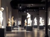 Rome tours - Guided Visit Palazzo Massimo and dinner